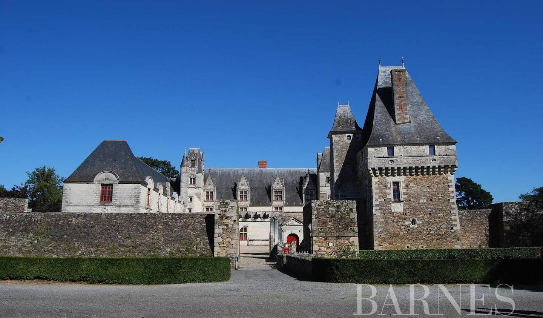 Castle Nantes