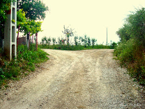 Photo: 2009.05.24