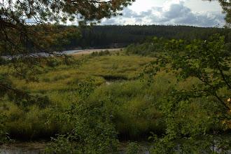 Photo: Riverside meadow