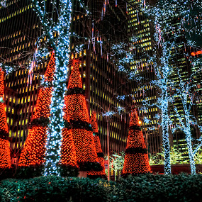 by Chip Bolcik - Public Holidays Christmas ( pwcholidays )