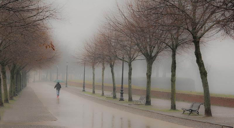 Nebbia sulle mura di Podista