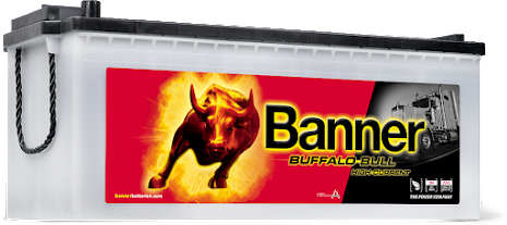 Startbatteri 12V180Ah BannerBuffaloBullSHD 68011.LxBxH:480/513x223x195/220mm