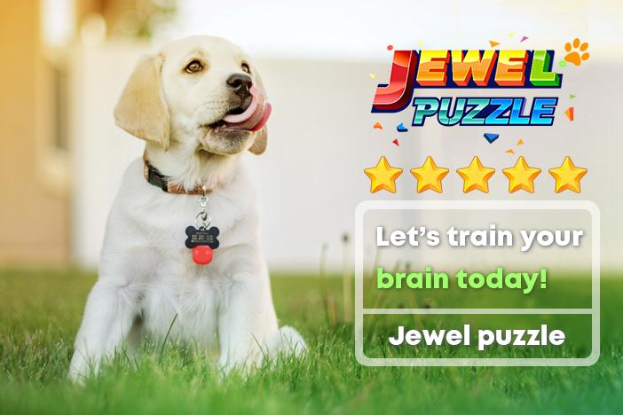 Gem Crush™ - Jewel Puzzle & Block Puzzle Jigsaw Android App Screenshot