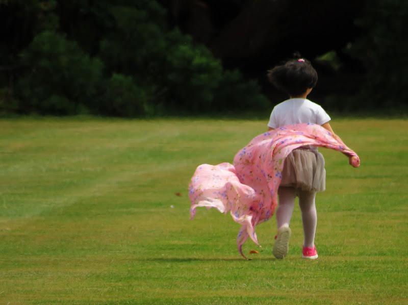 Corri nel vento! di Giorgio Lucca