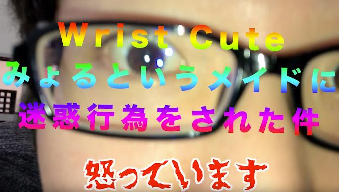 [意見募集]Wrist Cute みょるさんとのトラブルについて。みなさまのご意見を募集します[臨時]