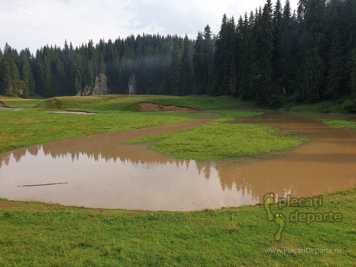 Lac Poiana Ponor Padis, dupa furtuna in Padis, ploi in padis, vremea padis, clima padis, trasee padis apuseni, parcul natural apuseni obiective turitice,
