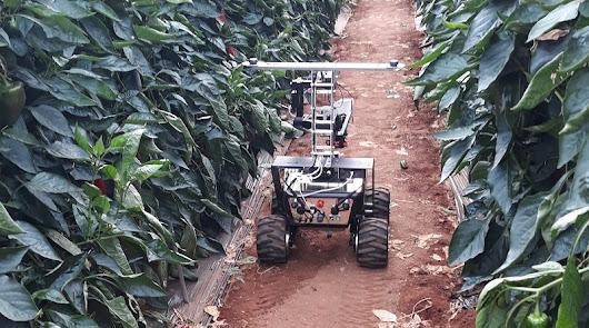 AINIA desarrolla un modelo demostrativo de agricultura de precisión