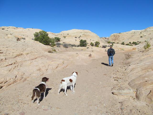 Starting up Farnsworth Canyon