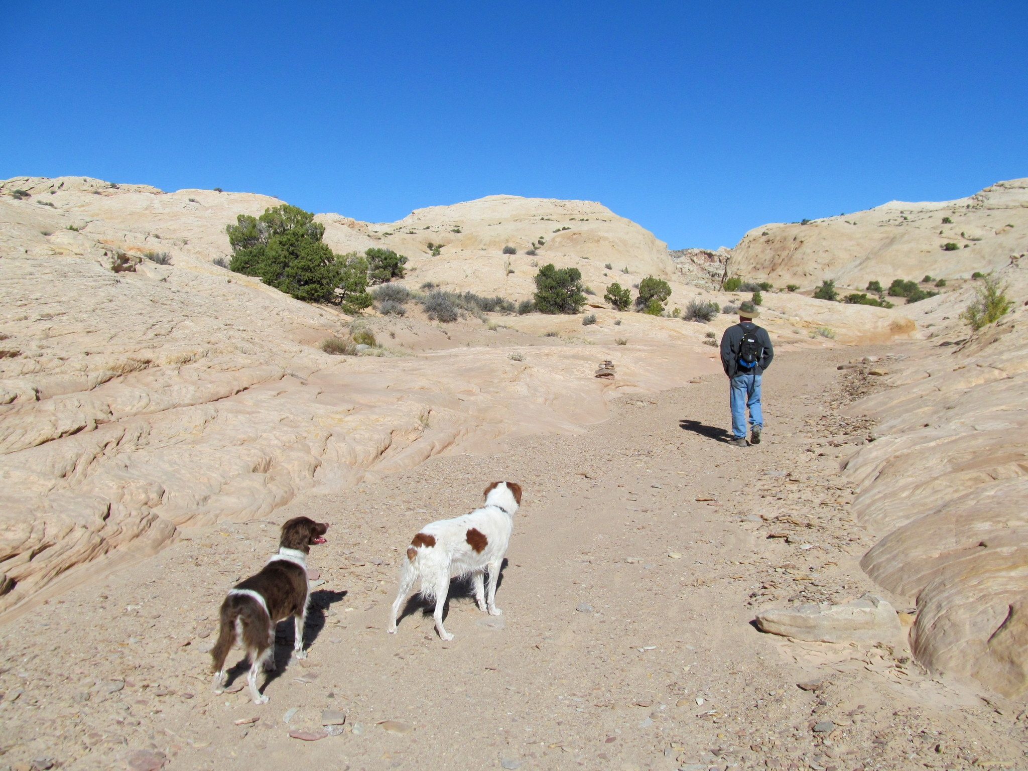 Photo: Starting up Farnsworth Canyon