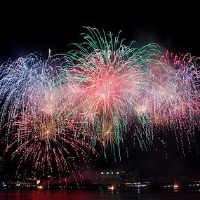 Fireworks by Marta Felgueiras - Abstract Fire & Fireworks ( senhora d'agonia 2013,  )