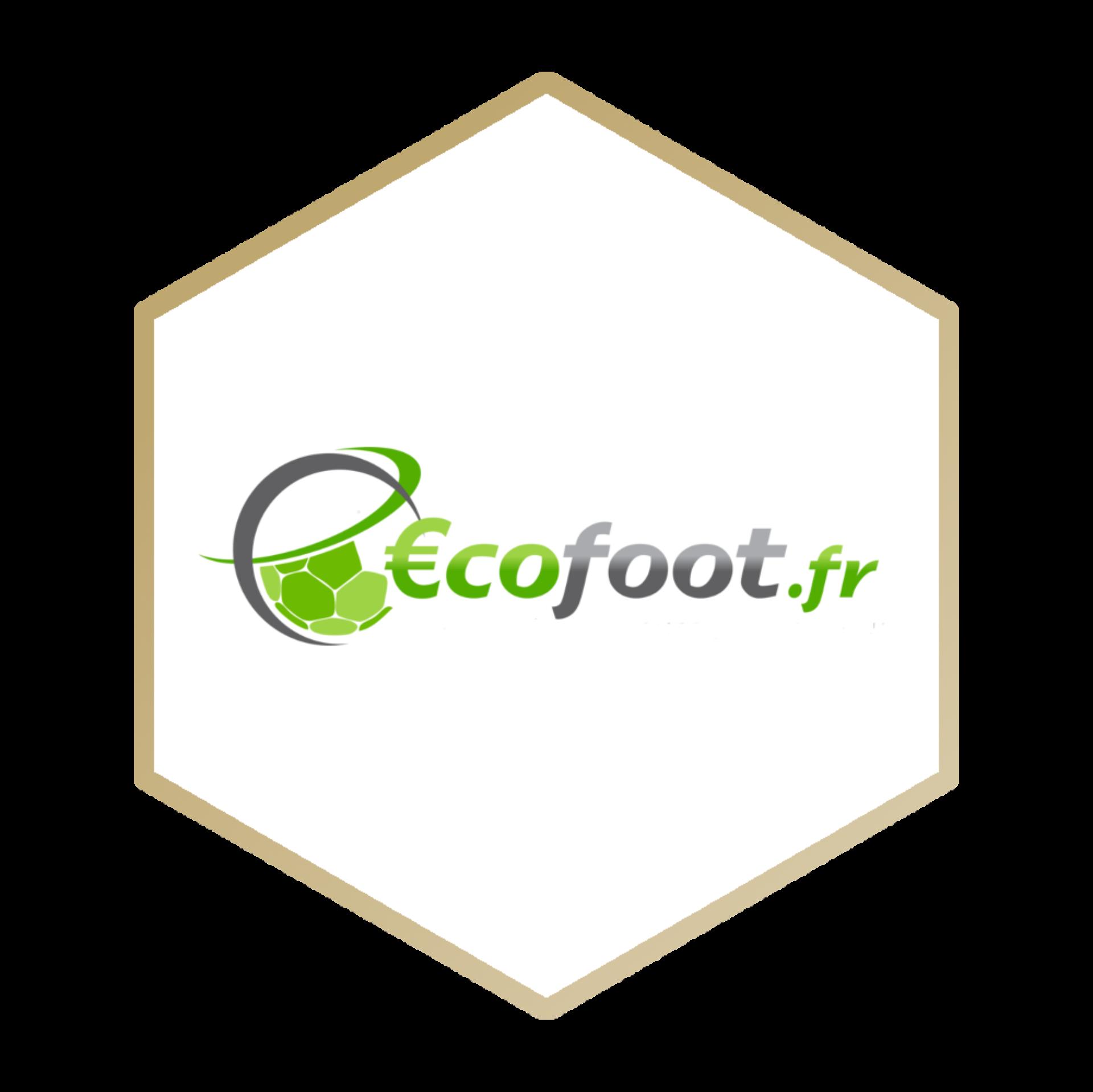 Interview Alexandre Drouet dans Ecofoot.fr