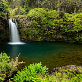 Resplendence by Ryan Gaboury - Landscapes Forests ( road to hana, maui, nature, pool, waterfall, travel, landscape, rainforest, hawaii )