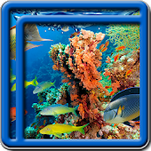Coral Reef Live Wallpapers