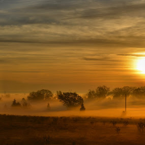 Foggy Sunrise by Trudy Mader - Landscapes Sunsets & Sunrises (  )