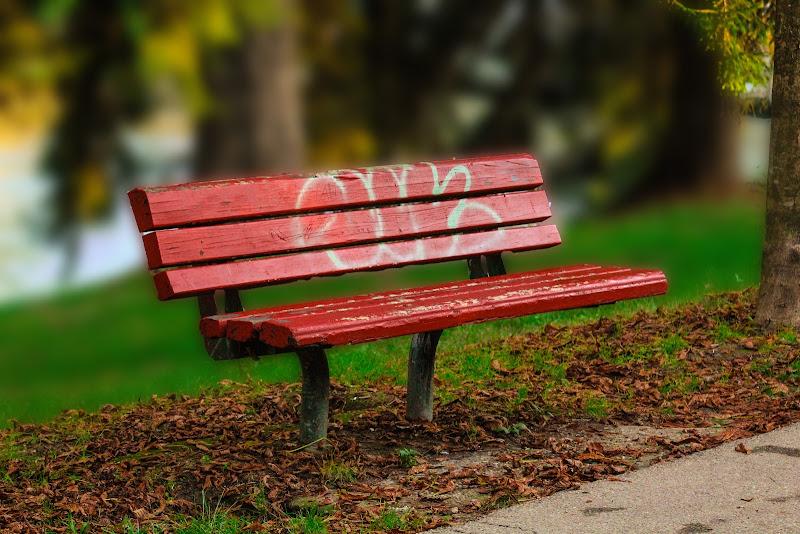 la solitudine di ciro_narzisi