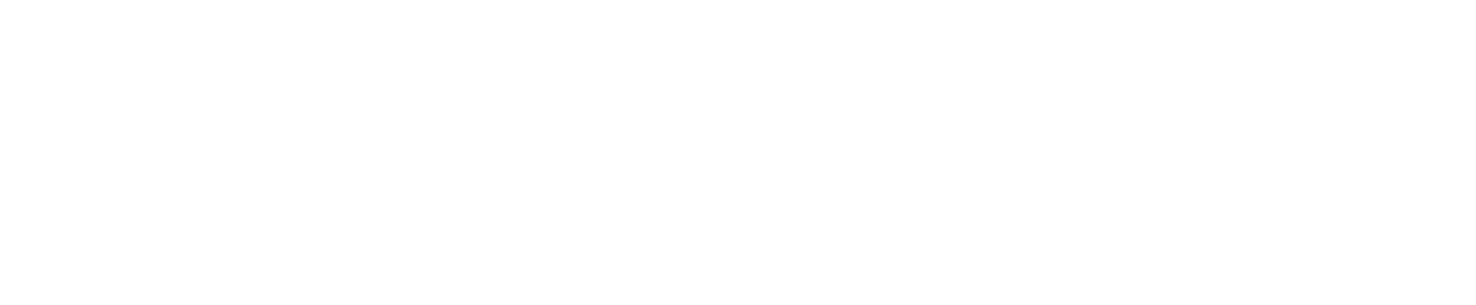 ActionCoach logo wit