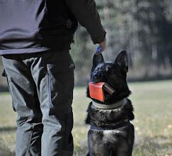 Photo: Lukas avleverer lommeboka til Torbjörn.