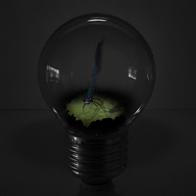 Trapped by Joachim Persson - Digital Art Animals ( lightbulb, trapped, blue, dark, dragonfly )