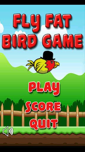 Fly Fat Bird Game