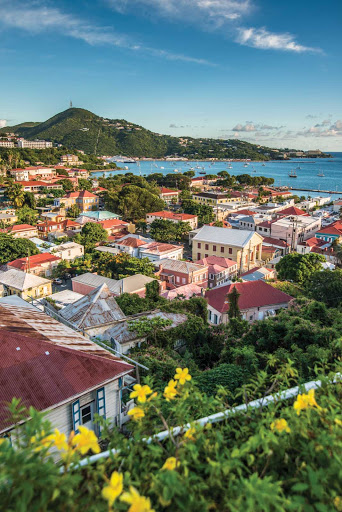 Overlooking the beautiful port of Charlotte Amalie on St. Thomas.