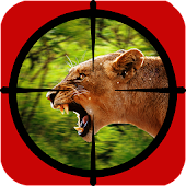 Top Deer Hunter Animal Hunter