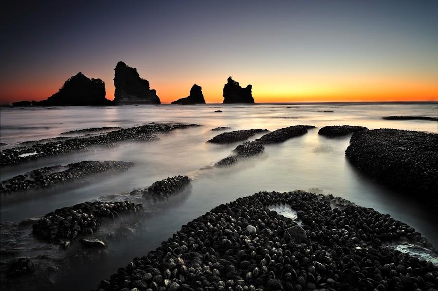 Motukikie Rocks, West Coast New Zealand by Nadly Aizat Nudri - Landscapes Sunsets & Sunrises ( motukikie, sunset, long exposure, west coast, new zealand, slow shutter )