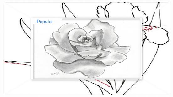 Zeichnung Flower Sketches Schritt für Schritt – Apps bei Google Play
