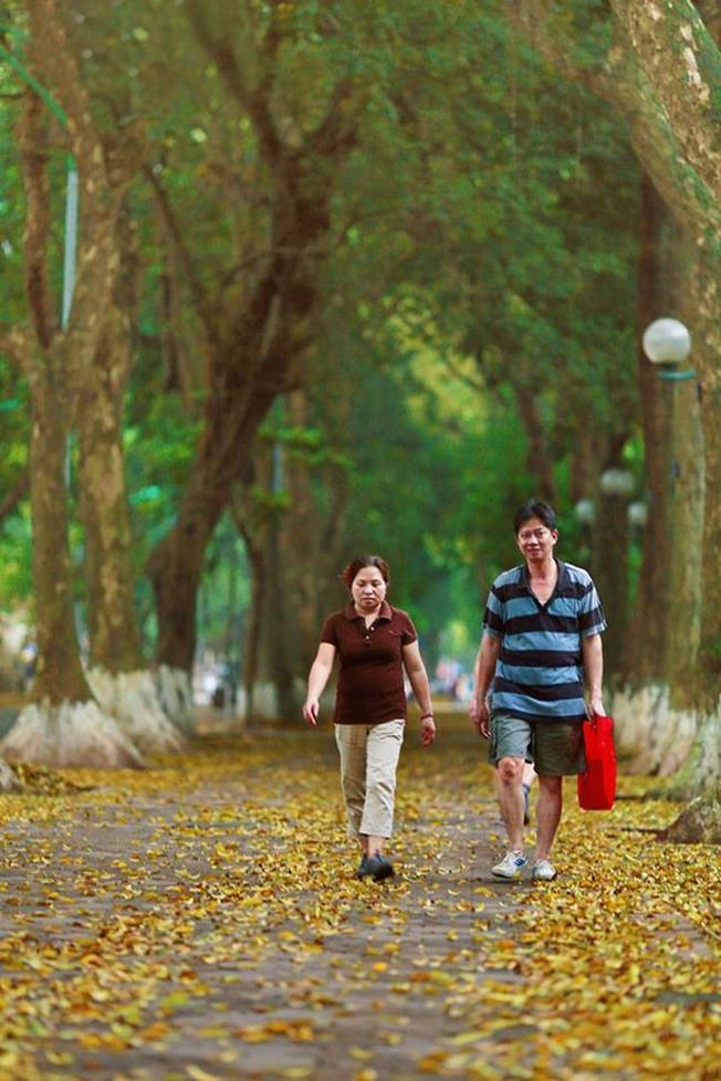 Thì mùa thu và mùa đông Hà Nội đã trở thành đặc sản