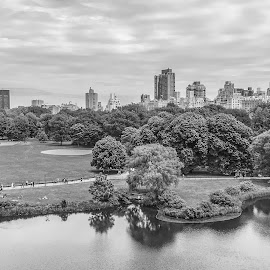 Central Park - New York by Antonello Madau - Instagram & Mobile iPhone