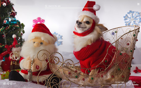 funny christmas puppies kittens wallpapers chrome插件下载crx 扩展