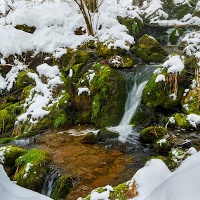 Winter stream by Tom Mat - Landscapes Waterscapes ( water, stream, winter, ice, snow )