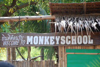 Photo: The monkey school on the River Kwai....
