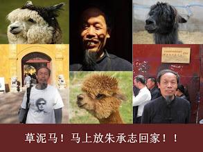 Photo: 关押朱承志大哥。草泥马!#七一草泥马节