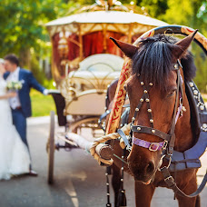 Wedding photographer Ekaterina Kotova (Chubuka). Photo of 19.08.2014