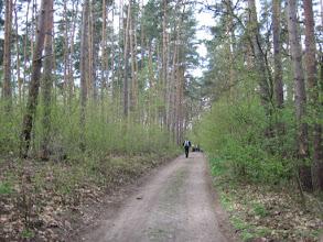 Photo: Podjechaliśmy samochodami do leśniczówki, zostawiliśmy je na parkingu i zagłębiliśmy się w las, podążając przez czas jakiś niebieskim i zielonym szlakiem.