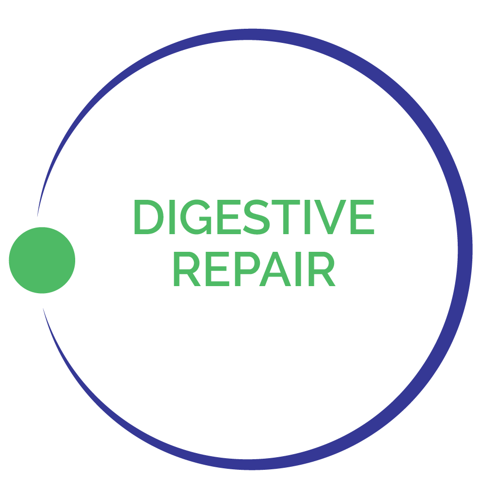 DigestiveRepairImage