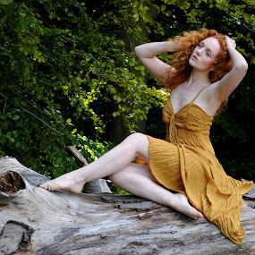 Girl on the Log by DJ Cockburn - People Portraits of Women ( natural light, sitting, nature, dress, woman, forest, redhead, ivory flame, portrait,  )