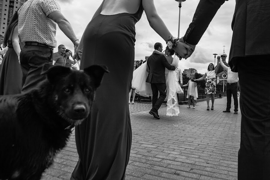 Wedding photographer Alina Postoronka (alinapostoronka). Photo of 03.01.2019