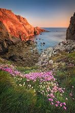 Photo: Flower Carpet Crozon, Bretagne, France