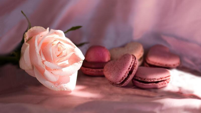 Pink Love di Nemesys61