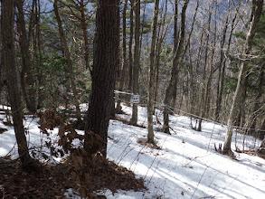 左側は茸山で入山禁止