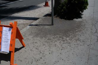 Photo: A streetside puddle of Palm tree oil, Santa Barbara, California, August 2, 2012.