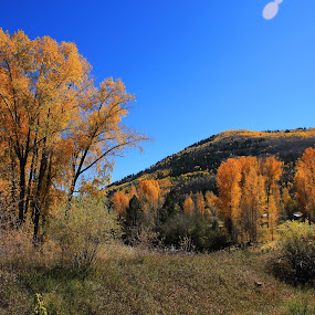 Fall in Telluride by Liesl Ross Photos - Landscapes Mountains & Hills ( mountains, fall, lens flare, golden, aspen )