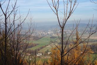 Photo: pohled z lesní cesty na Město Albrechtice