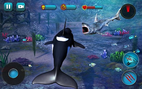Killer Whale Beach Attack 3D- screenshot