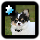 Jigsaw Puzzle: Puppy file APK Free for PC, smart TV Download