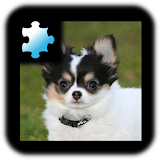 Jigsaw Puzzle: Puppy Apk Download Free for PC, smart TV