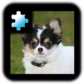 Jigsaw Puzzle: Puppy