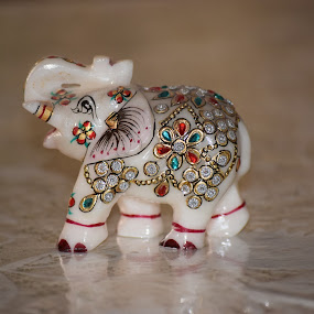 by Sukamal Biswas - Artistic Objects Toys