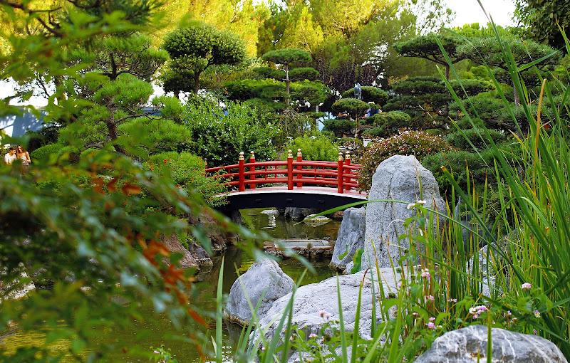 Il ponte giapponese - Claude Monet di utente cancellato
